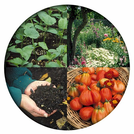 four organic gardening images in a circle