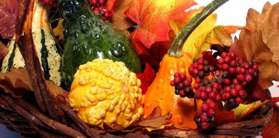 natural thanksgiving basket with squash and cranberries