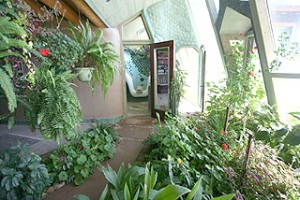 The main windows of an Earthship create a greenhouse
