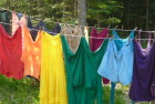 How Much Can A Clothesline Really Save?